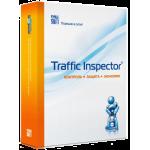 Продление Traffic Inspector Gold
